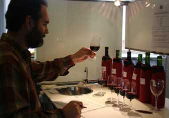 Catador en la calificación de los vinos