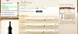 LU&BE 2009 - 90 PUNTOS EN WWW.ECATAS.COM POR JOAQUIN PARRA WINE UP
