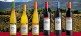 Nueva colección Viñas del Vero