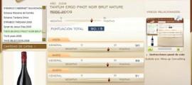 TANTUM ERGO PINOT NOIR BRUT NATURE ROSE 2009 - 90.15 PUNTOS EN WWW.ECATAS.COM POR JOAQUIN PARRA WINE UP
