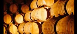 TORRES-Nave envejecimiento de brandy en Sant Martí Sarroca, Penedès