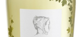 Viñas de Anna  Botella