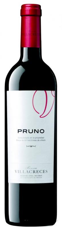 PRUNO13